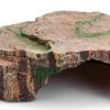 Cueva Roca Plana para reptiles